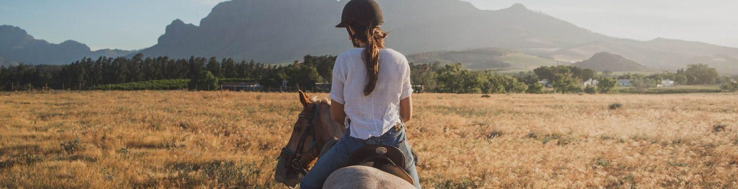 Norells Hästsport